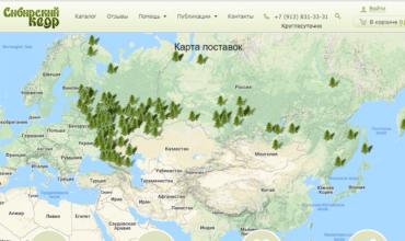 питомник сибирский кедр красноярск