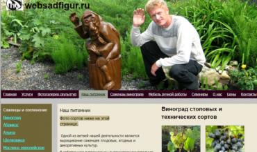 саженцы винограда в липецкой области