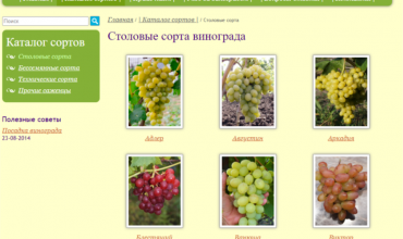 виноград в белгороде саженцы
