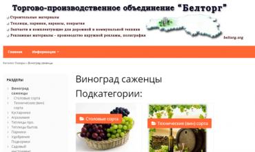 саженцы винограда в белгороде