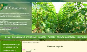 саженцы винограда в крыму купить