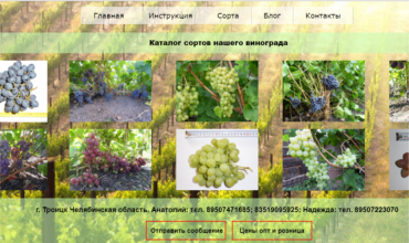 саженцы винограда в Челябинске купить