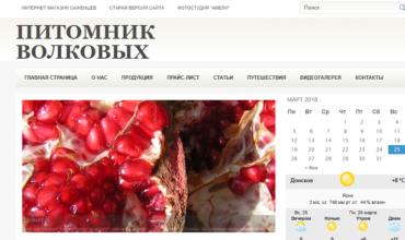 internet-magazin-ostrov-tsvetov-v-krimu-dizaynerskiy-buket-iz-roz-i-hrizantem