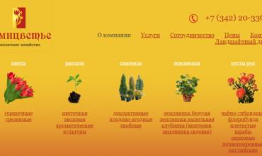 купить рассаду овощей в перми