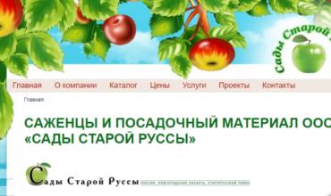 питомник старой руссы каталог