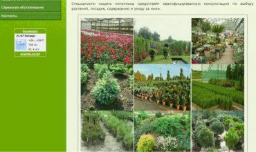 питомник растений ульяновск